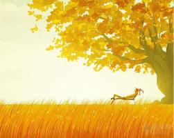 欣赏一个人,始于颜值,合于性格,久于善良,终于人品