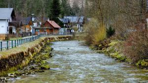 故乡的老河
