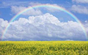 最好的生活方式:淡看过去,珍惜现在,相信未来