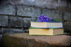 永远不要瞧不起任何人——5个小故事引人深思,道出人生哲理!
